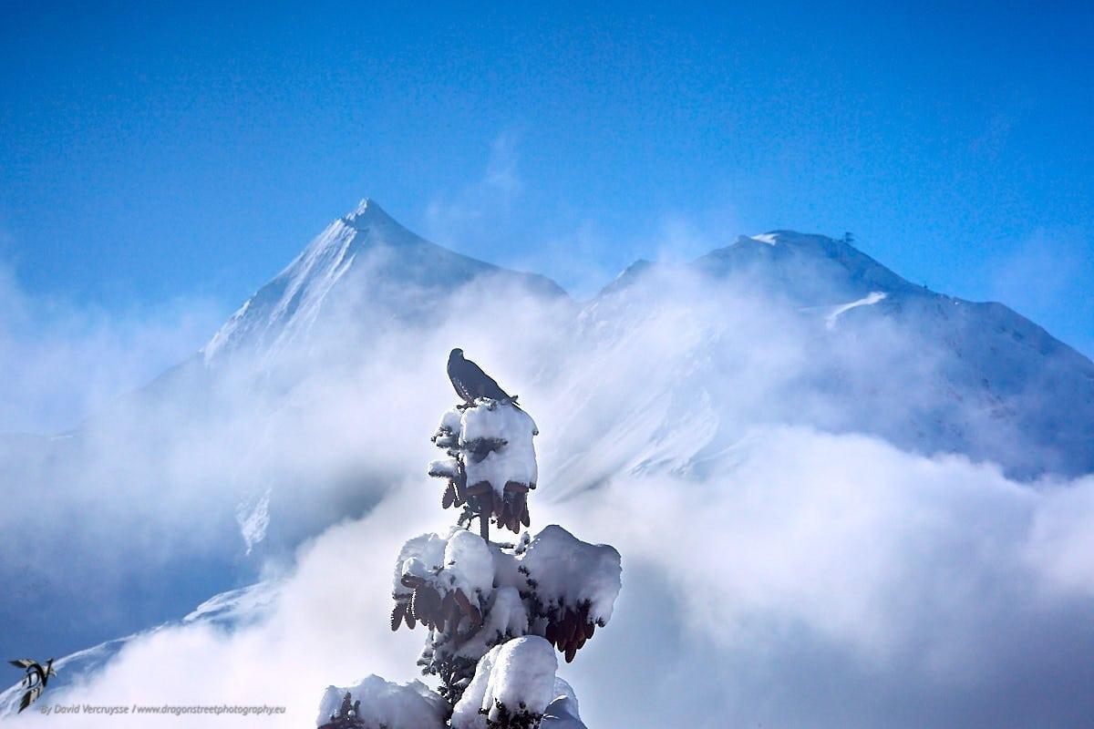 Exposition en montagne